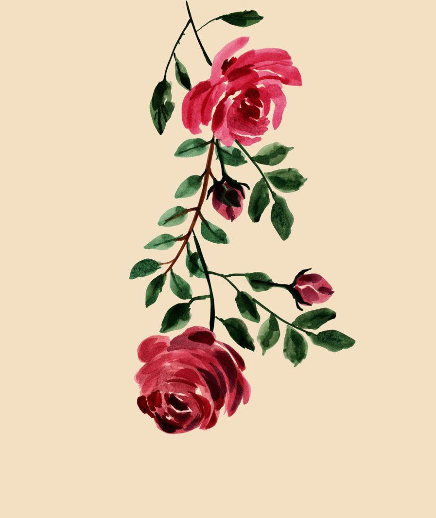 Sinestezic floral print for Rose midi cocktail skirt
